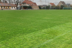 Der Rasenplatz